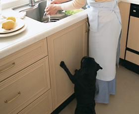 キッチンは独立しているのがベター